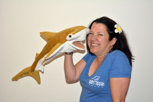 boot 2017: Haischutz