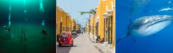 Pressebereich Yucatan Dive Trek Mexiko