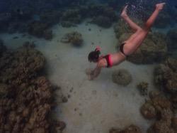 Palau Pacific Resort führt Riesenmuschel-Pflanzprogramm ein